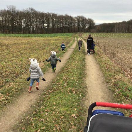 Wandelen in het veld